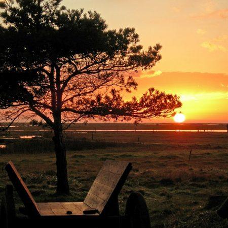 Solnedgang på Læsø